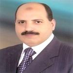 Hazem M. Shaheen
