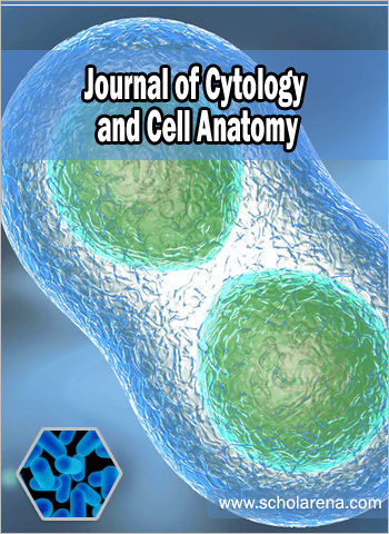 Articles in Press | Journal of Cytology and Cell Anatomy | Open Access